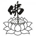 yingwang9